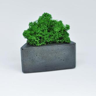 Треугольный бетонный горшок и зеленый мох