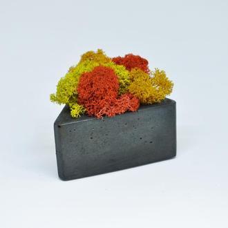 Осенний микс из скандинавского мха в треугольном горшке из бетона