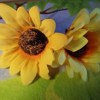 Соняшник середній