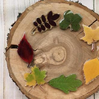 Брошь с живыми листьями, осеннее украшение брошка на пальто или свитер с листом в эпоксидной смоле