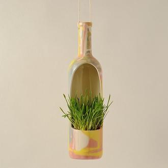 Цветной вазон для цветов. Керамичесий подвесной горшок для цветов, кактусов и суккулентов