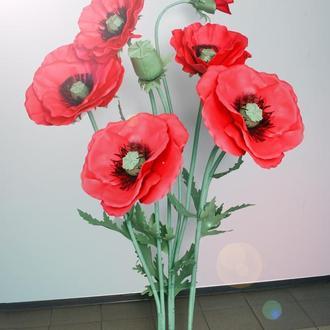 Большие ростовые цветы. Композиция из маков.
