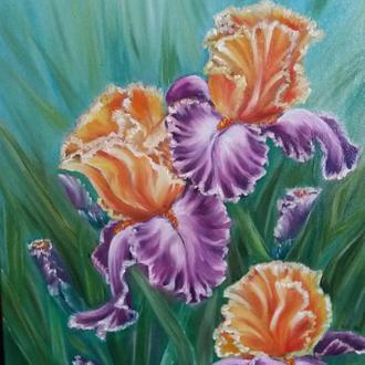 Іриси картина маслом з квітами