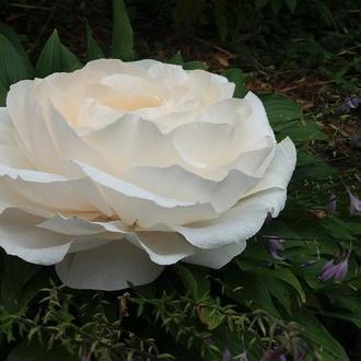 Роза для фотосессии, свадьбы, детского дня рождения