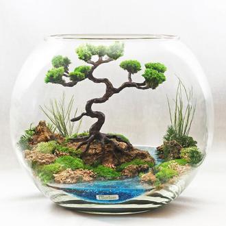 Флорариум-моссариум миниландшафт с бонсай