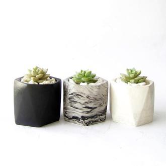 Бетонный горшок для кактусов и суккулентов