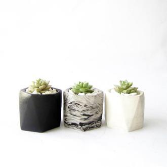 Горшок бетонный с эхеверией
