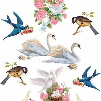 Декупажна карта Троянди Квіти Лебеді Птиці Ластівки Голуби Вінтаж 37V 55 г/м2, А4, 210Х290 мм