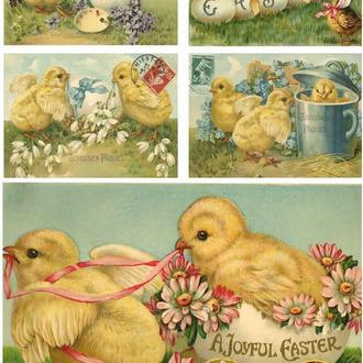 Декупажная карта Пасха Яйца Цыпленок Цветы Подснежники Весна 45V 55 г/м2, А4, 210Х290 мм