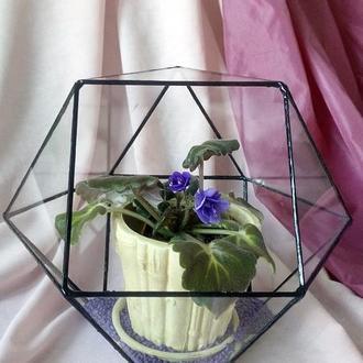 Кашпо-кристалл