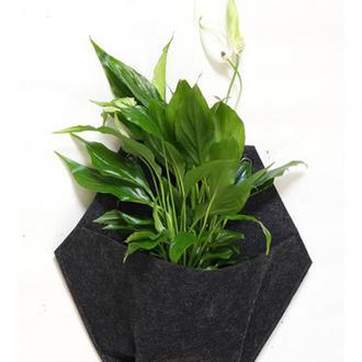Модуль Для Растений — Шестиугольник