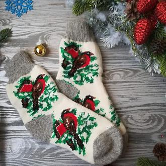 Новогодние носки из овечьей шерсти 4 Снегиря  с серыми манжетами, р. 38-41