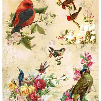 Декупажная карта Розы Птицы Цветение Цветы Винтаж 99V 55 г/м2, А4, 210Х290 мм