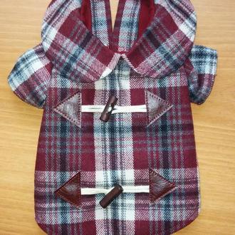 Пальто для Йоркширського тер'єра