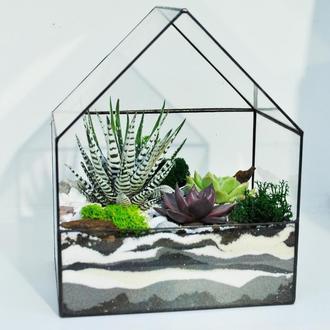 Флорариум в форме домика (набор для высадки) Садовая мастерская workshopgarden