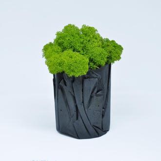 Горшок, кашпо для кактусов и суккулентов