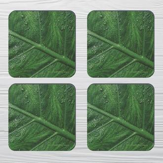 Набор костеров «Зелёные Листья» (4шт) на пробковой основе