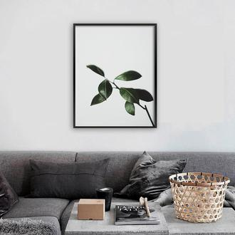 Фотопостеры Ветка с листьями