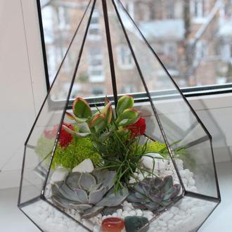 Флорариум геометрический с суккулентми, додекаэдр 200Х290