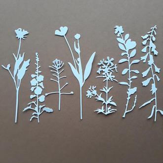 набор вырубки из картона Луговые травы
