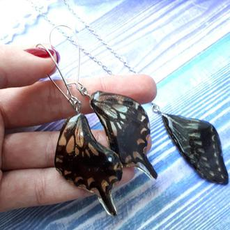 Комплект украшений из крыльев настоящей тропической бабочки