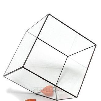 Флорариум №4 giga Cub