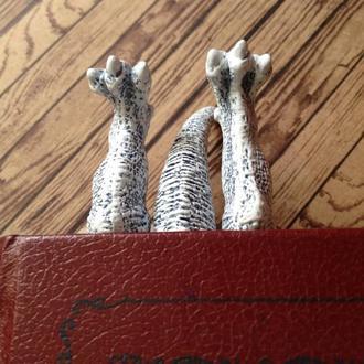 Закладка для книги дракон. Bookmark Ice Dragon, Bookmark Game of thrones, Dragons legs