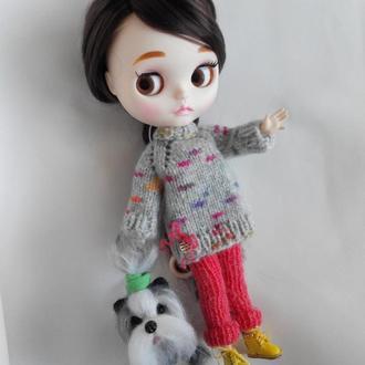 Тёплый свитер и лосины для куклы Блайз, Айси