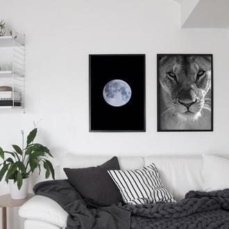 Фотопостер Луна