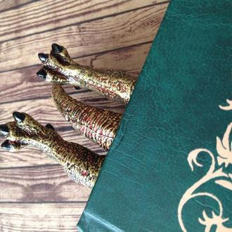 Закладка для книги Dragon. Bookmark Game of thrones. Bookmark Dracarys