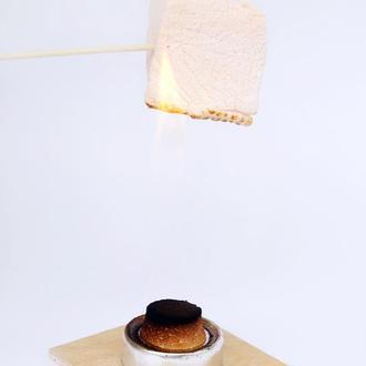 Набор для жарки маршмеллоу дома