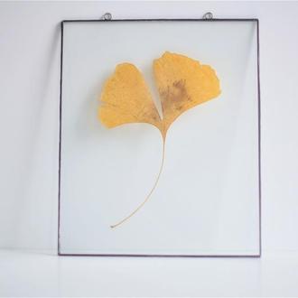 Украшение интерьера из стекла. Гербарий в стекле.