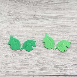 Вырубка′ Листья′