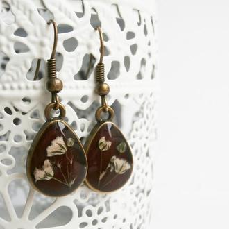 Серьги подвески с цветами гипсофилы