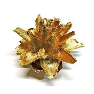 Сухоцвет Star Flower золотистый