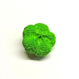 Сухоцвет Garlic зеленый