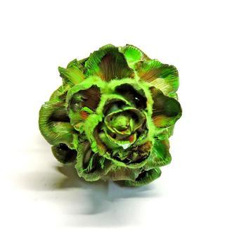 Сухоцвет Velvet Flover зеленый