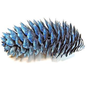 Шишка еловая средняя синяя