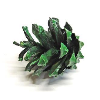 Шишка сосны натуральная зеленая