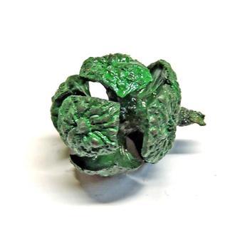 Шишка кипариса натуральная зеленая
