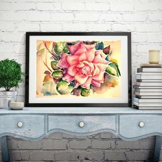 Роза картина Роза акварель Ботаническая акварель Цветы картина Картины с цветами Картины цветов
