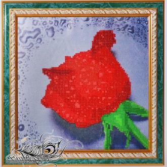 """Картина """"Алая роза"""""""