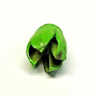 Сухоцвет Flashlight окрашенный зеленый