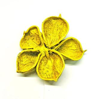 Сухоцвет Dry Clover жёлтый