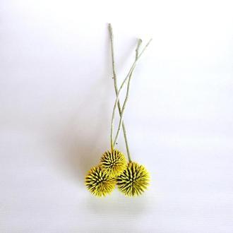 Сухоцвет Ball Lightning окрашенный желтый