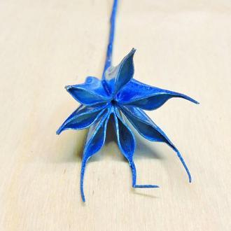 Сухоцвет Rose of Wind синий