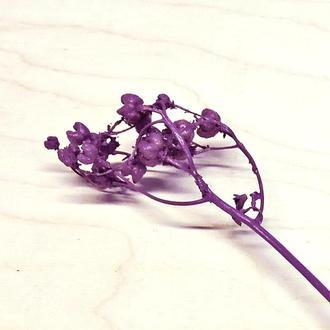 Сухоцвет Inspiration окрашенный фиолетовый