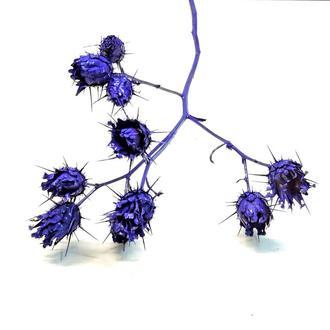Сухоцвет Flovermars окрашенный фиолетовый