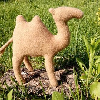 Верблюд Гога, він же Гоша