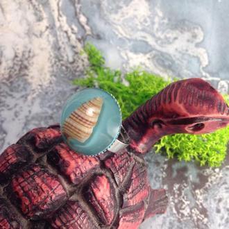 Кольцо с морской ракушкой рожок